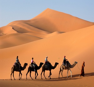 Morocco tour of desert